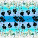 Jandry Palms: pop que se establece como un faro en la oscuridad